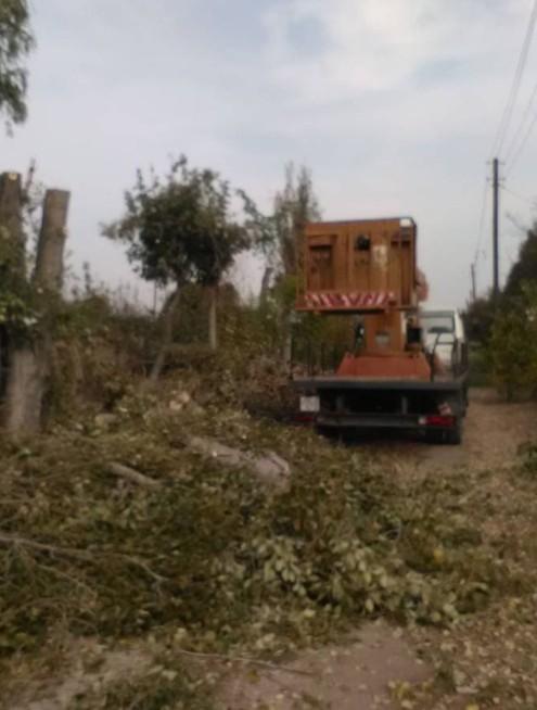 Magaslati munkálatok, Fakivágás, Homlokzat javítás - Berta Csaba