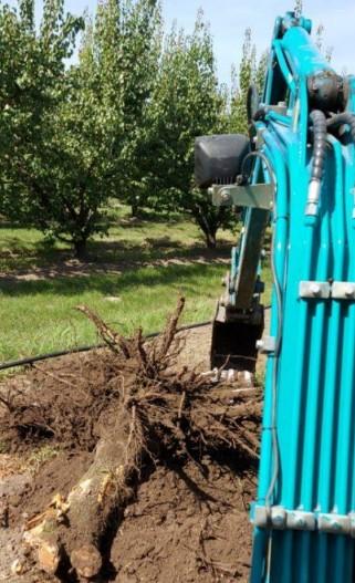 Gépi földmunka, Tereprendezés, Pincetömb kiemelés